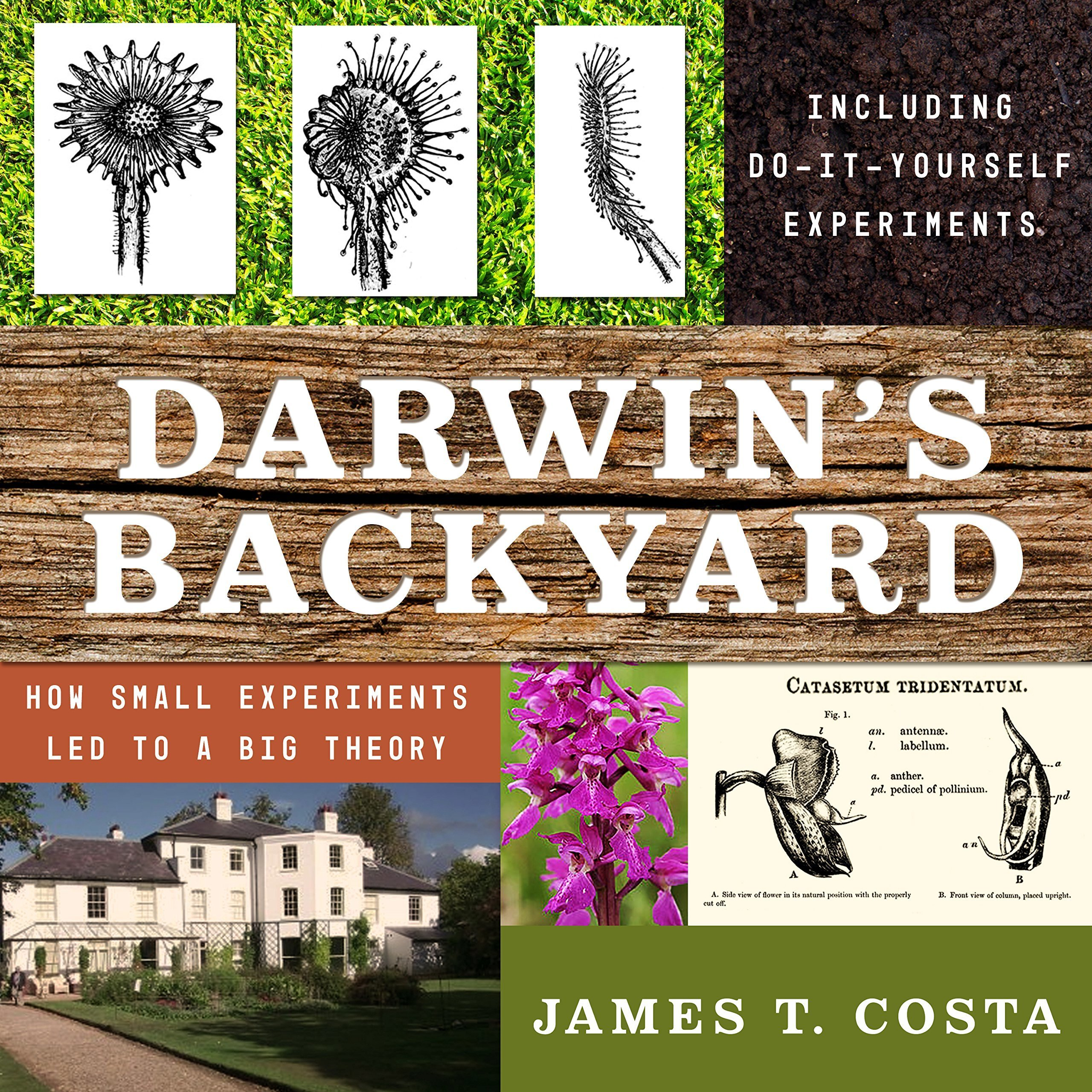 Printable Darwin's Backyard: How Small Experiments Led to a Big Theory Audiobook Cover Art