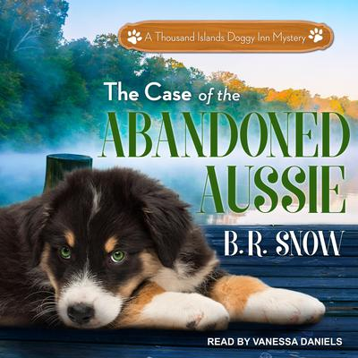 The Case of the Abandoned Aussie Audiobook, by B.R. Snow