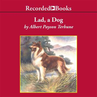 Lad: A Dog Audiobook, by Albert Payson Terhune