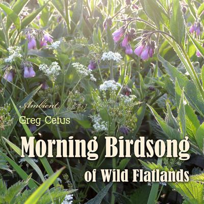 Morning Birdsong of Wild Flatlands Audiobook, by Greg Cetus