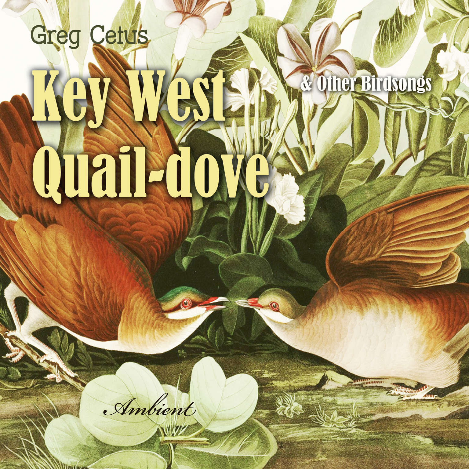 Key West Quail-dove and Other Birdsongs Audiobook, by Greg Cetus