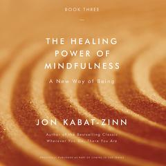 The Healing Power of Mindfulness: A New Way of Being Audiobook, by Jon Kabat-Zinn