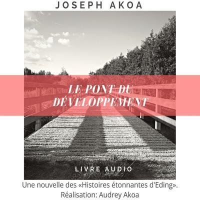 Le pont du développement Audiobook, by Joseph Akoa