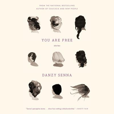 You Are Free: Stories Audiobook, by Danzy Senna