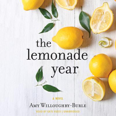 The Lemonade Year: A Novel Audiobook, by Amy Willoughby-Burle
