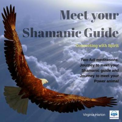 Meet your Shamanic Guide: Shamanic Healing Journeys Audiobook, by Virginia Harton