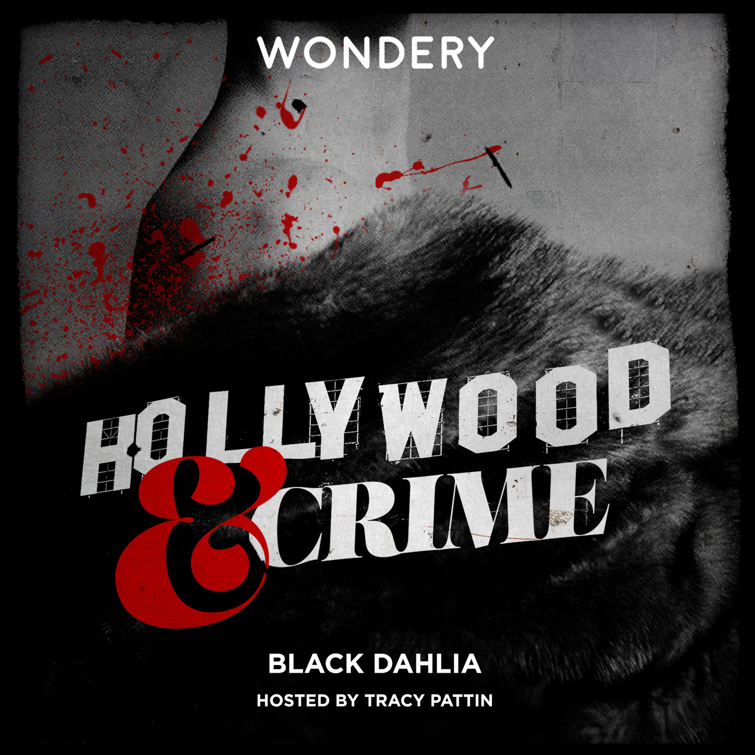 Printable Hollywood & Crime: Black Dahlia Audiobook Cover Art