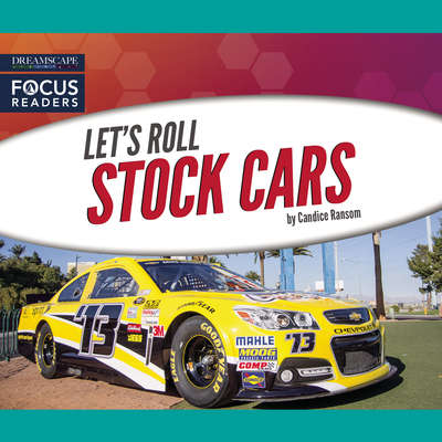 Stock Cars Audiobook, by Candice Ransom