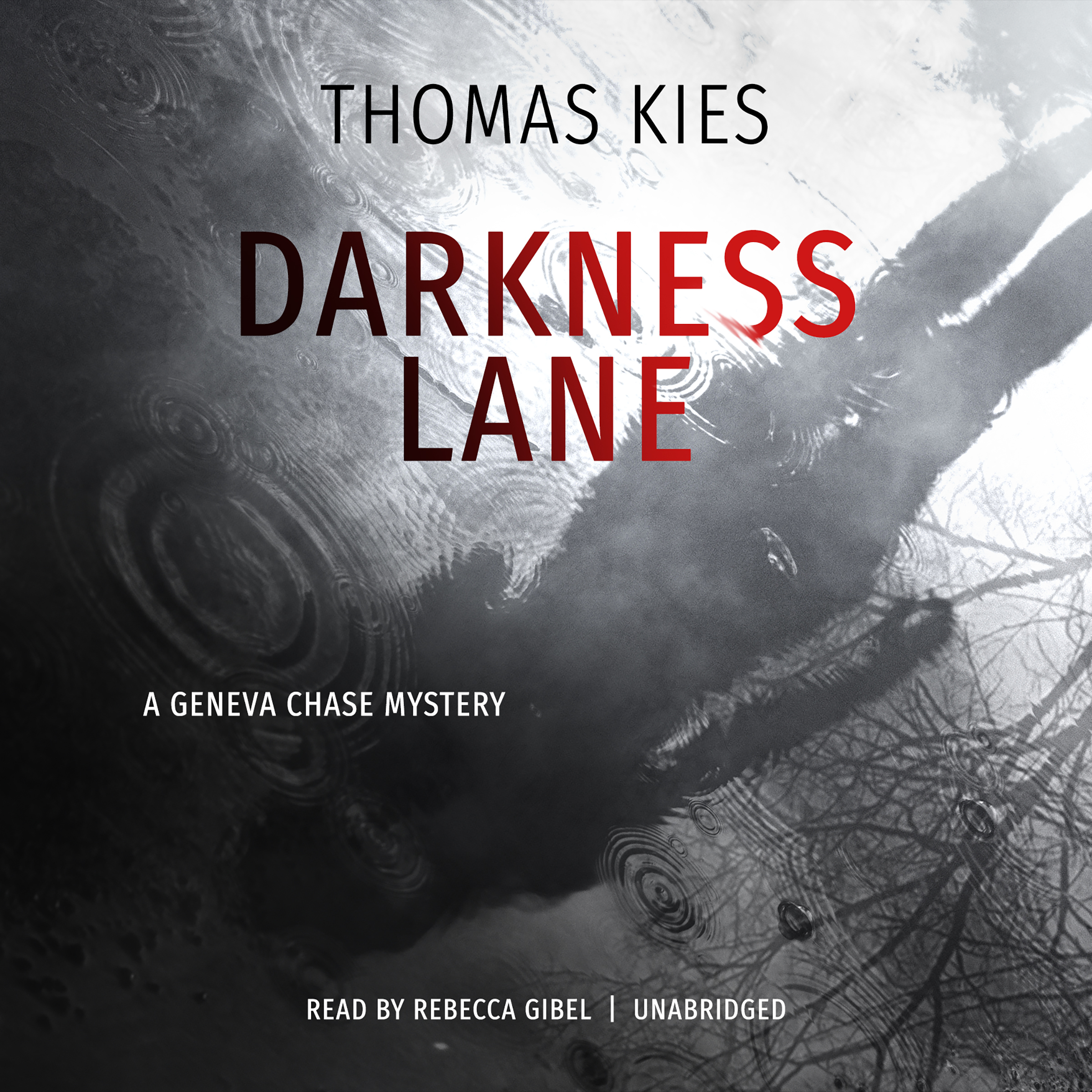 Printable Darkness Lane: A Geneva Chase Mystery Audiobook Cover Art