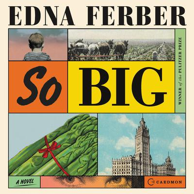 So Big: A Novel Audiobook, by Edna Ferber