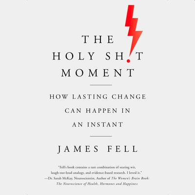 The Holy Sh!t Moment: How Lasting Change Can Happen in an Instant Audiobook, by James Fell