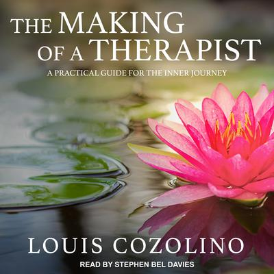 The Making of a Therapist: A Practical Guide for the Inner Journey Audiobook, by