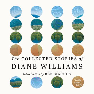 The Collected Stories of Diane Williams Audiobook, by Diane Williams
