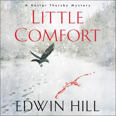 Little Comfort Audiobook, by Edwin Hill