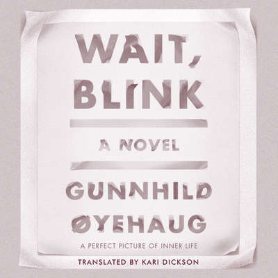 Wait, Blink: A Perfect Picture of Inner Life Audiobook, by Gunnhild Oyehaug