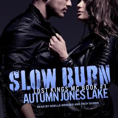 Slow Burn Audiobook, by Author Info Added Soon