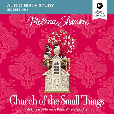 Church of the Small Things Audio Study: Making a Difference Right Where You Are Audiobook, by Melanie Shankle