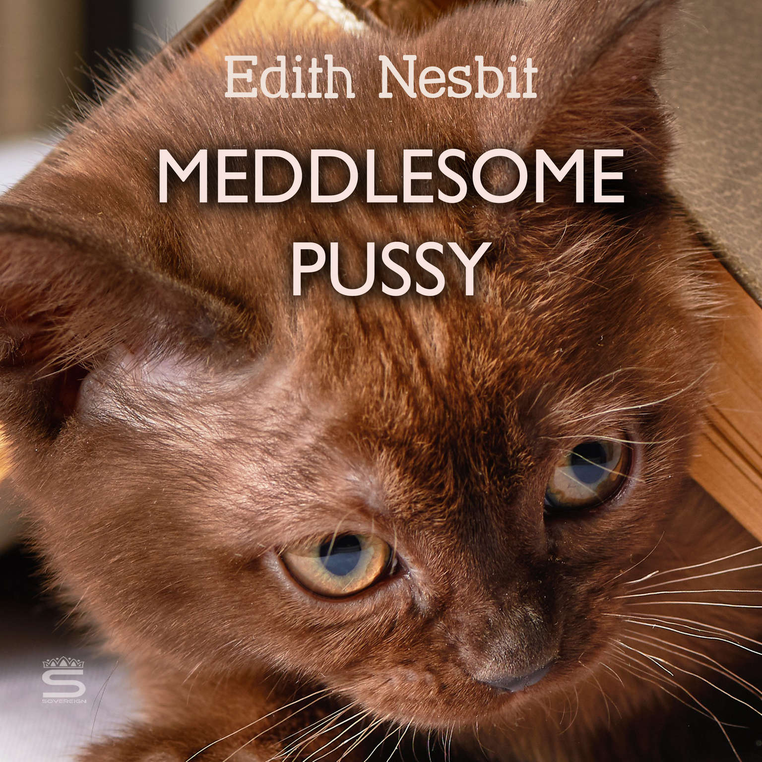 Meddlesome Pussy Audiobook, by E. Nesbit