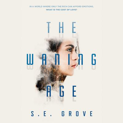 The Waning Age Audiobook, by S. E. Grove
