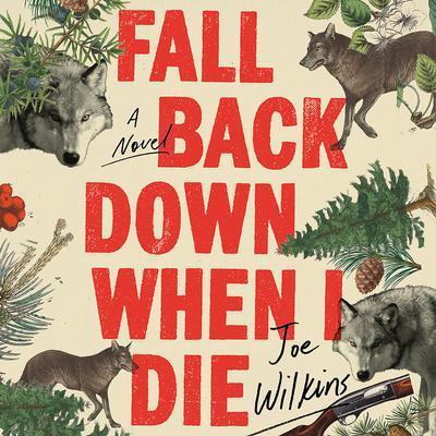 Fall Back Down When I Die Audiobook, by Joe Wilkins
