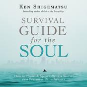Survival Guide for the Soul: How to Flourish Spiritually in a World that Pressures Us to Achieve Audiobook, by Author Info Added Soon