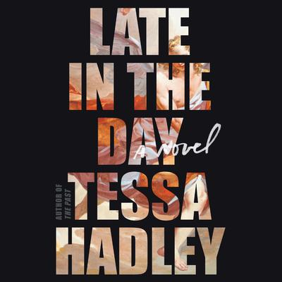 Late in the Day: A Novel Audiobook, by Tessa Hadley