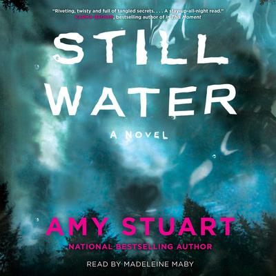 Still Water Audiobook, by Amy Stuart