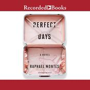 Perfect Days Audiobook, by
