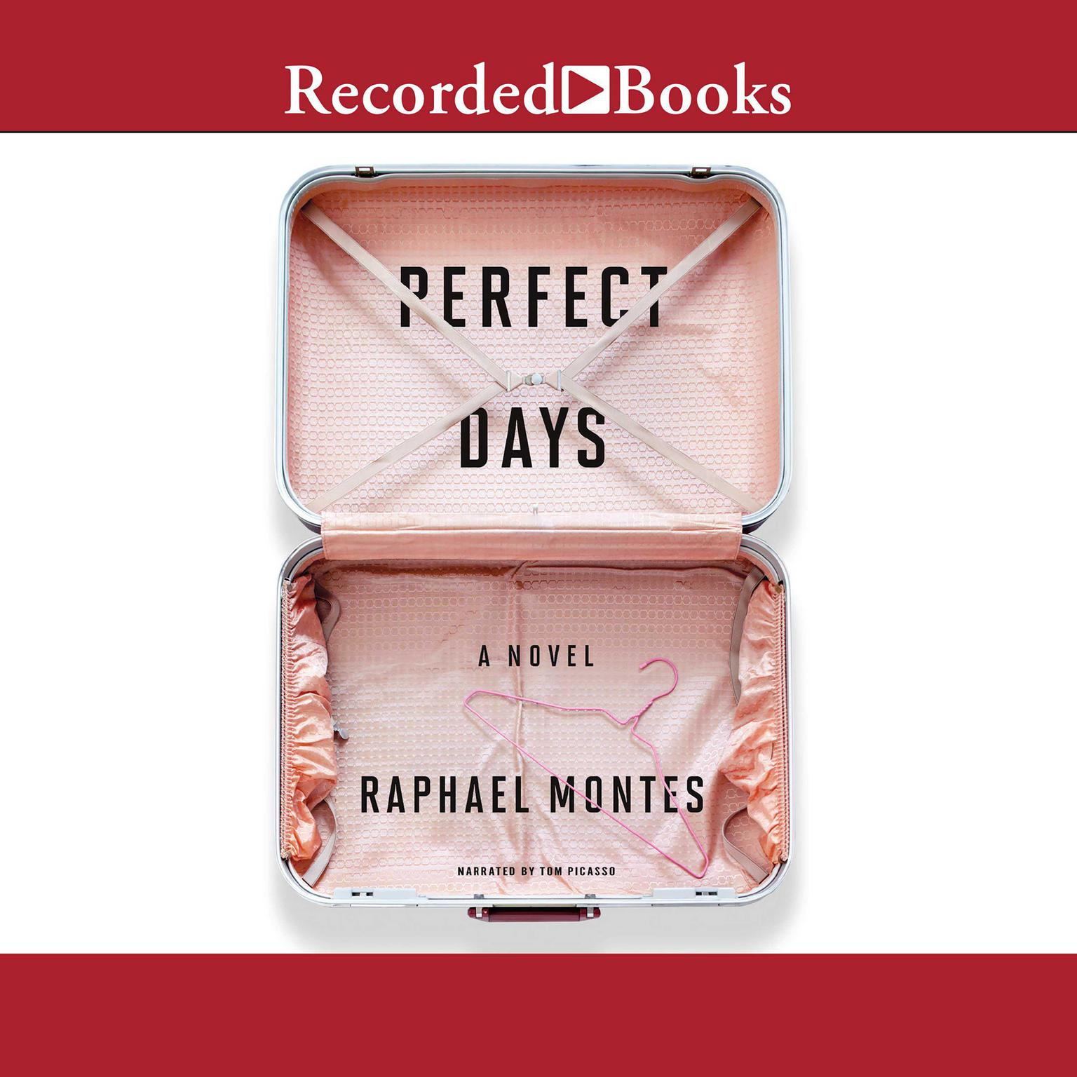 Printable Perfect Days Audiobook Cover Art