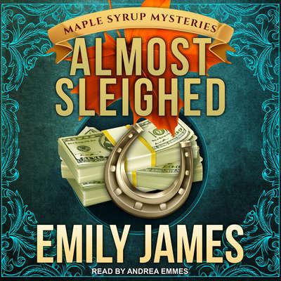 Almost Sleighed Audiobook, by Emily James