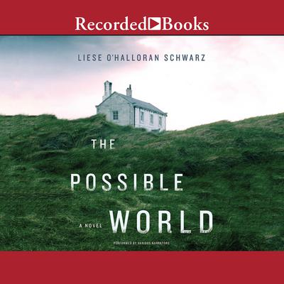 The Possible World Audiobook, by Liese O'Halloran Schwarz