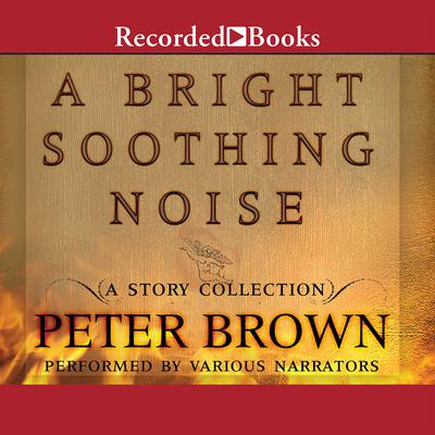 A Bright Soothing Noise Audiobook, by Peter  Brown