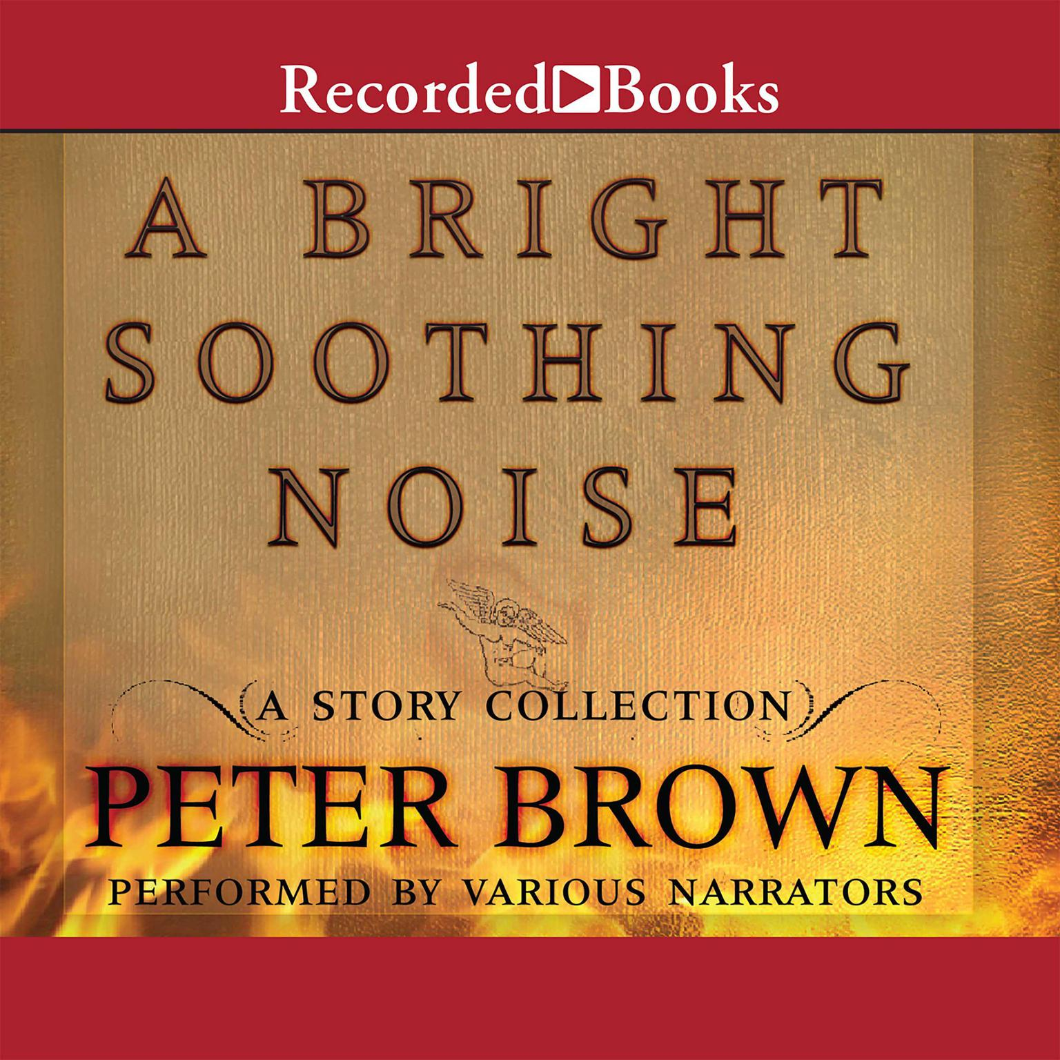 Printable A Bright Soothing Noise Audiobook Cover Art