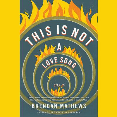 This Is Not a Love Song Audiobook, by Brendan Mathews
