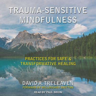 Trauma-Sensitive Mindfulness: Practices for Safe and Transformative Healing Audiobook, by David A. Treleaven