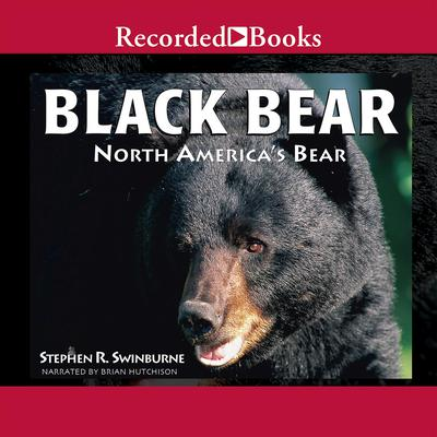 Black Bear: North Americas Bear Audiobook, by Stephen R. Swinburne