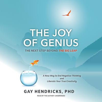 The Joy of Genius: The Next Step beyond The Big Leap Audiobook, by Gay Hendricks