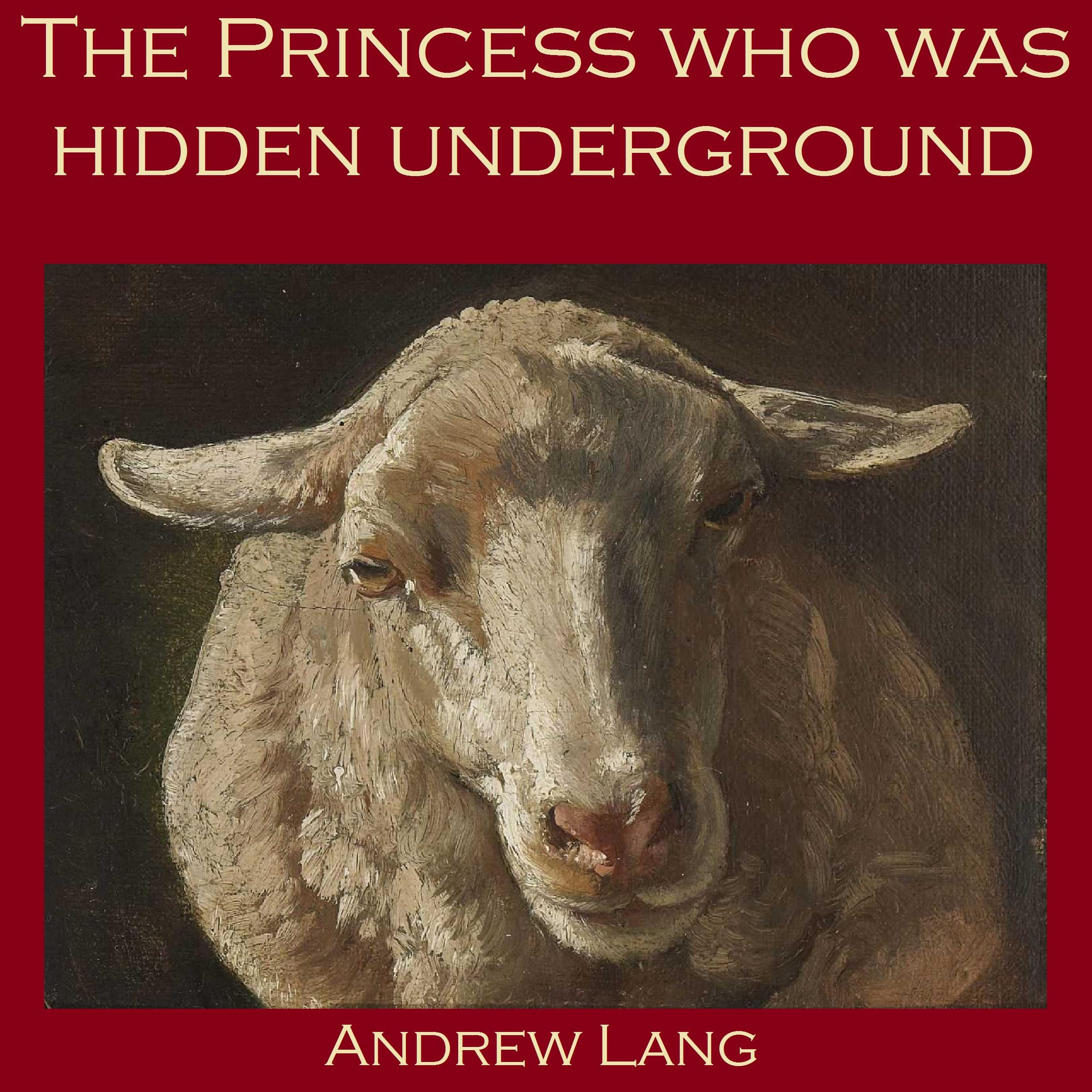 Printable The Princess who was Hidden Underground Audiobook Cover Art