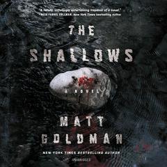 The Shallows Audiobook, by Matt Goldman