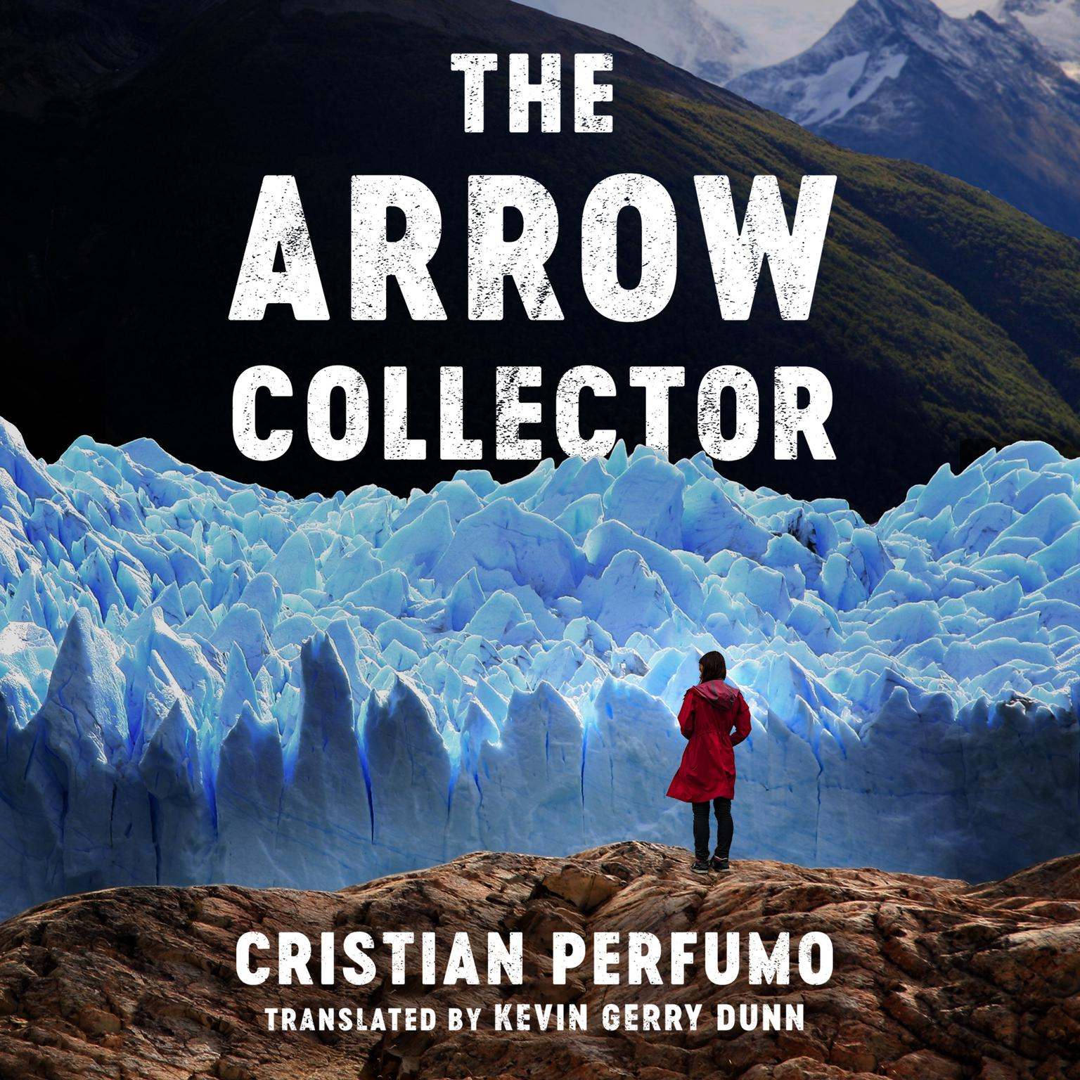 The Arrow Collector Audiobook, by Cristian Perfumo