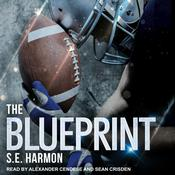 The Blueprint Audiobook, by Author Info Added Soon