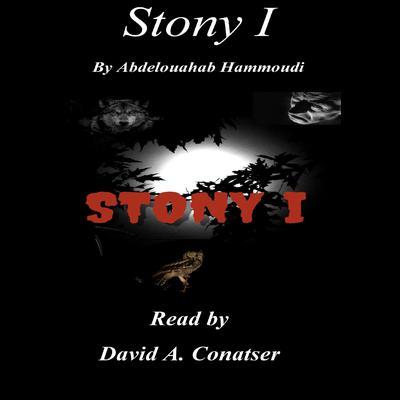STONY I Audiobook, by Abdelouahab Hammoudi