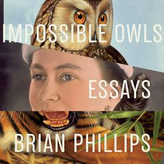 Impossible Owls: Essays Audiobook, by Brian Phillips