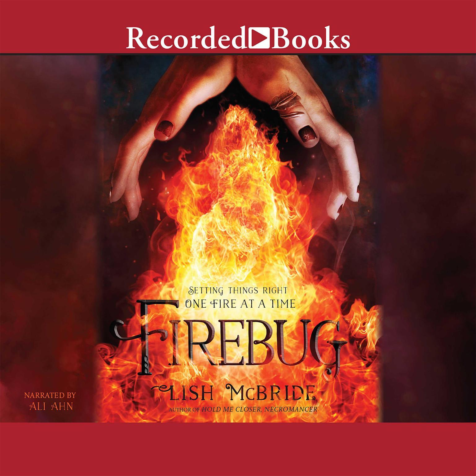 Printable Firebug Audiobook Cover Art