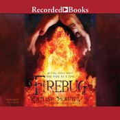 Firebug Audiobook, by Lish McBride