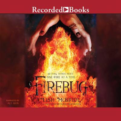 Firebug Audiobook, by Lish McBride