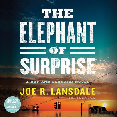 The Elephant of Surprise Audiobook, by Joe R. Lansdale
