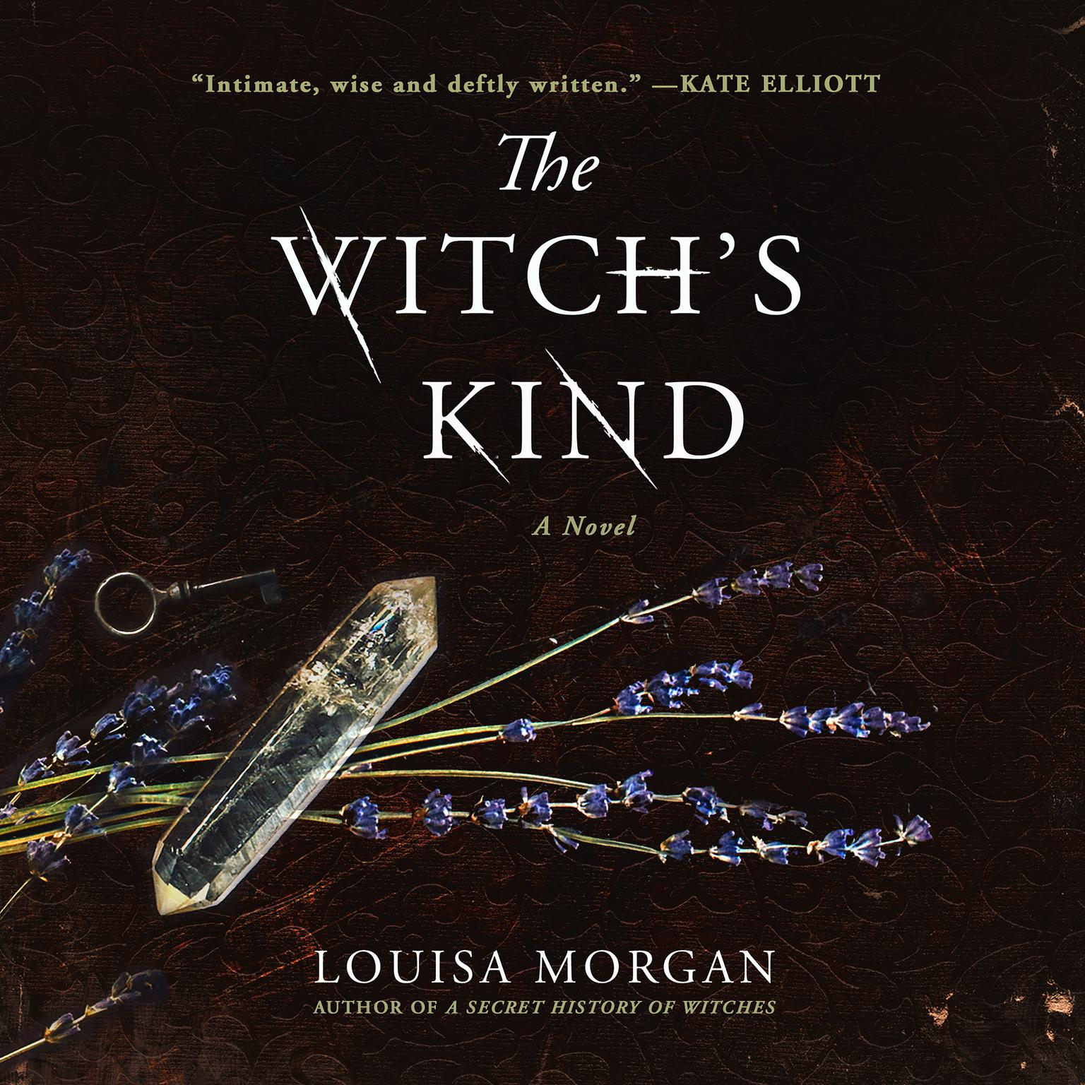 Printable The Witch's Kind: A Novel Audiobook Cover Art