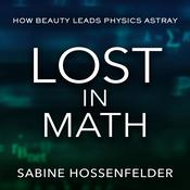 Lost in Math: How Beauty Leads Physics Astray Audiobook, by Author Info Added Soon