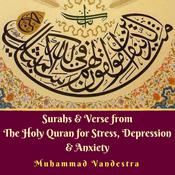 Surahs & Verse from The Holy Quran for Stress, Depression & Anxiety Audiobook, by Muhammad Vandestra
